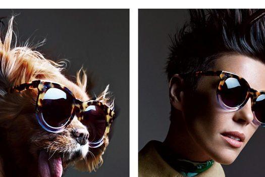 Собаки в очках  Karen Walker