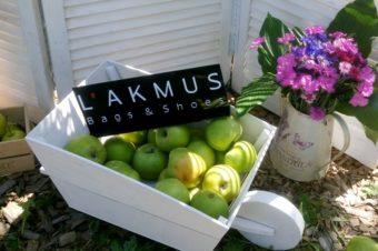 Первый летний пикник с L'AKMUS