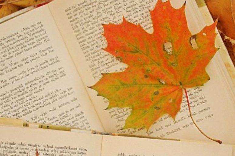 Что я читала в октябре